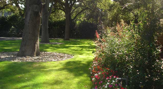 Landscape Design: Planting, Lawns, Softscaping